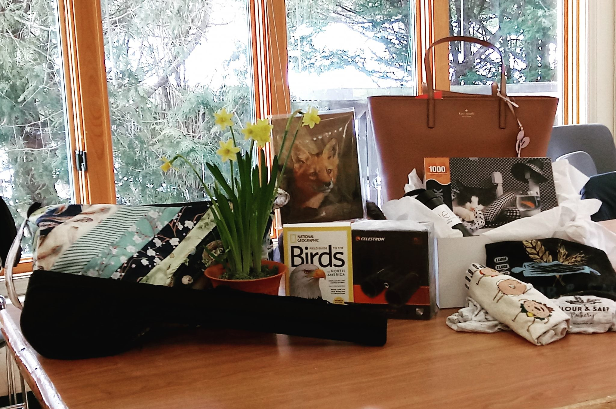 Spring Frolic Silent Auction moved to August 1st